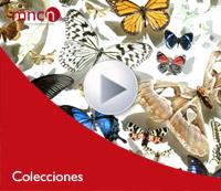 audiovisuales colecciones mediateca
