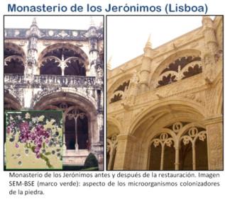 http://www.mncn.csic.es/docs/repositorio/es_ES/Biogeoquimica/fig_ascaso-2.jpg